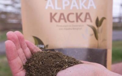 Alpaka Dünger – Alles was du über ALPAKA KACKA wissen musst!